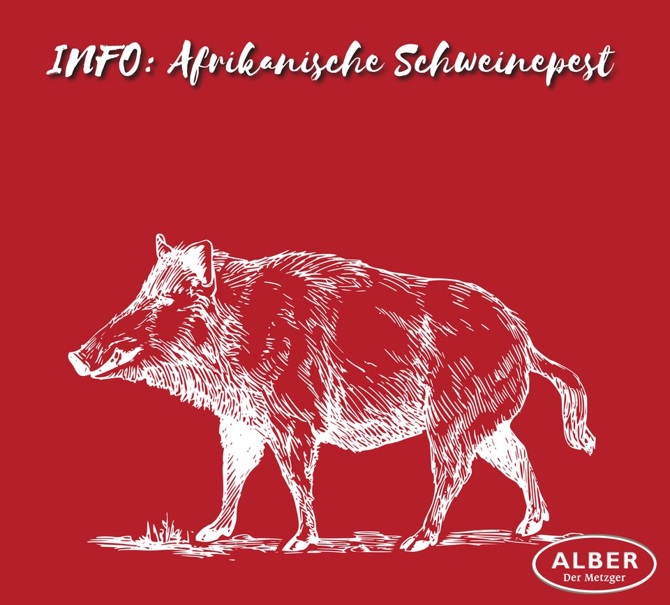 info-schweinepest